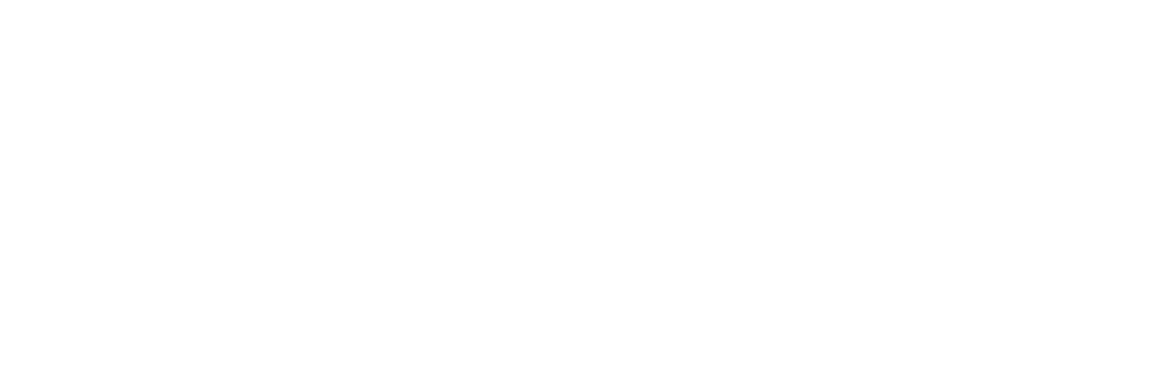 Nene Automobile Rosenheim